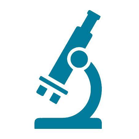 Formulation Scientist Resume Samples JobHero